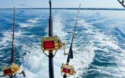 Чем отличается морская рыбалка от речной?