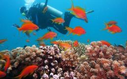 Активный отдых на море осенью — куда поехать за летним теплом?