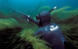 Что нужно для подводной охоты? Конечно купить гидрокостюм из неопрена